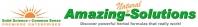 Amazing-Solutions, Premier Enterprises Overview