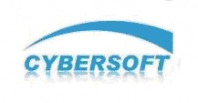 Cybersoft, Inc. Overview