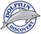 Dolphin Discovery Overview