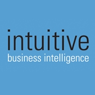 Intuitive Business Intelligence Limited Overview