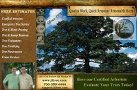JL Tree Service Inc Overview