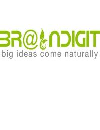BRAINDIGIT IT Solution Overview