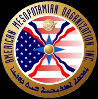 American Mesopotamian Organization Overview