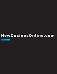 New Casinos Limited Overview