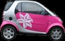Car Insurance For Women