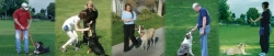 Smarty Paws Dog Training in New Hyde Park, NY Announces New Group Classes for Obedience and Socialization