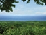 Tax Sheltered Asset Protection and Appreciation in Paradise- Free eSeminar on Costa Rica Real Estate