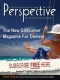 Perspective International Ltd