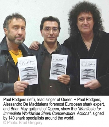 Queen and Paul Rodgers Join Researchers of the World to Stop the Shark Slaughter