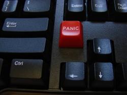 Novelty Panic Button Reduces Economic Stress