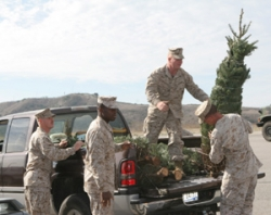 Garden Center Participates in Trees for Troops