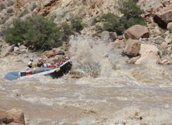 Colorado River Rages as Cataract Canyon Hits Peak Flow