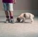 Method carpet & tile cleaning