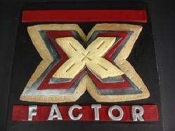 X Factor 2009 Winner is Bradfords Bakers