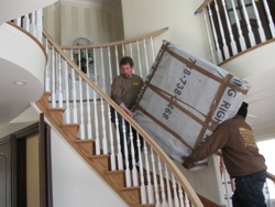 Bed Bug – Busters Enters the New York Metro Area Moving & Storage Market