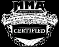 Mixed Martial Arts Industry Prepares for a Quantum Leap in 2010 - the MMA Conditioning Association Provides Safety, Science and Financial Security