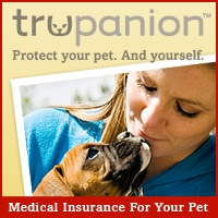 Trupanion Prepares Pet Owners for Seasonal Allergies in Pets with Pet Insurance Coverage