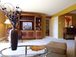Luxury Naperville Condominiums for Less Than a Rental. Buyers Move in on Investment Potential and Neighborhood Cache.