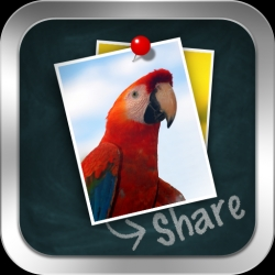 Emtrace Launches New iPad App for Creating and Sharing eCards