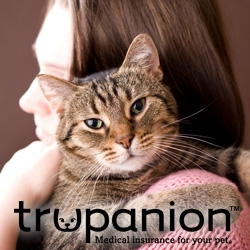 Trupanion Reminds Pet Owners of Thanksgiving Dangers