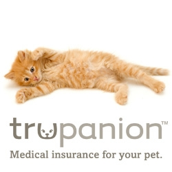 Pet Insurance Company Trupanion Offers Tips for New Pet Owners