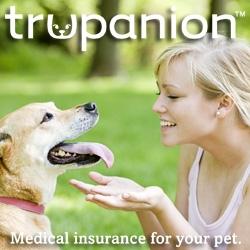 Pet Insurance Company Trupanion Warns About Antifreeze