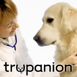 Trupanion Reminds Pet Owners of Valentine's Day Hazards