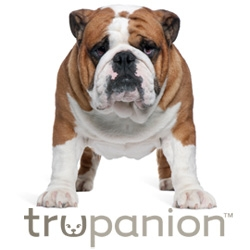 Trupanion Pet Insurance Now Available in Rhode Island and New Mexico
