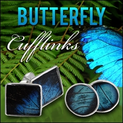 Aymara Designers Creates Exclusive Amazonian Butterfly Cufflinks - Make a Difference Through Fashion