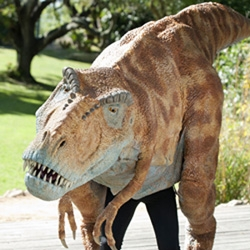 """Hollywood Effects House Creates 15-Foot Long T. Rex for Santa Barbara Zoo Show """"How to Train Your Dinosaur"""""""