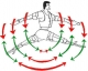 High Efficiency Fitness Company