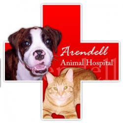 Arendell Animal Hospital is Proud to Form a Partnership with the Charity Pets for Patriots, Inc., That Connects Shelter Pets with Military Families