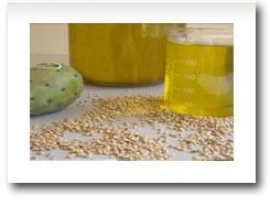 CasaSpa Purus Oil - 100% Pure (Bio) Prickly Pear Seed Oil