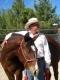 Weitekamp Horse Training