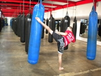 New Website Offers Latest on Martial Arts and Mixed Martial Arts Training, Schools and Certification