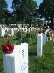 Memorial Day Roses Honor Those Who Have Given the Ultimate Sacrifice