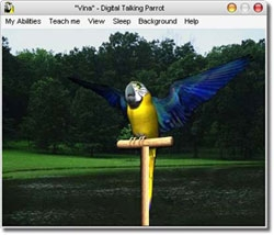 """CNET Gives an """"Excellent"""" Review to Audio4fun's Talking Parrot Screensaver"""