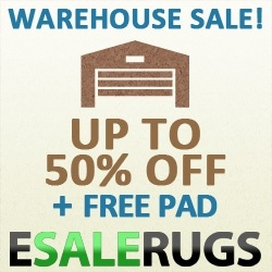 Online Shopping Hub MyReviewsNow.net Promotes Area Rugs and Oriental Rugs Warehouse Sale at Esalerugs