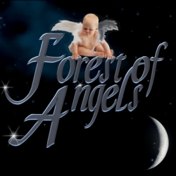Forest of Angels is an Event with Business, Charity and Kids in Mind