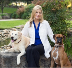 Best in the Bay Veterinary Hospital Adds Talented New Veterinarian to Team