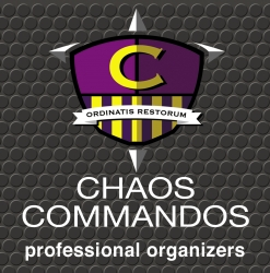 Chaos Commandos Offers Dentists Maximum Efficiency with Minimum Disruption in Their Office