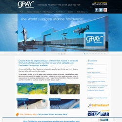 Gray Taxidermy is Continuing to Perfect the Art of Mounting Fish. Now Showcased with an Entirely Newly Designed Website.
