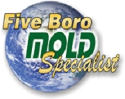 NYC Mold Inspection Company, Five Boro Mold Specialist Inc., Offers Hurricane Sandy Mold Removal Service Package