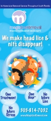 Magic Lice Removal Highlights There Are No Short-Cuts to Head Lice Removal