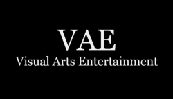 Visual Arts Entertainment Takes on a New Role