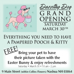 Grand Opening of The Dazzling Dog