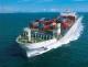 Import/Export Organizaton