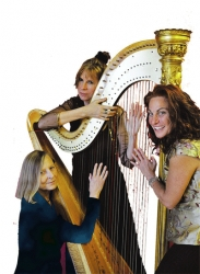 Harp Festival at Harps Etc. Celebrates 10th Anniversary of This Unusual Business