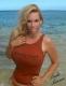Lindi Lauren LLC