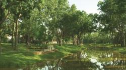 Taylor Morrison Houston Readies Sienna Plantation for Debut in Missouri City